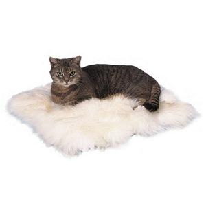 Schaffell-Kissen für Katzen