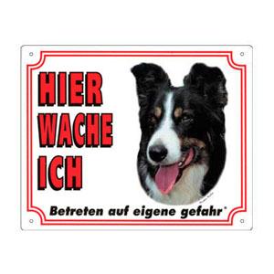 GRATIS Hunde Warnschild, Border Collie