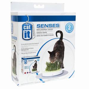 Catit Senses Gras Garten Ersatz-Gras 2er Pack