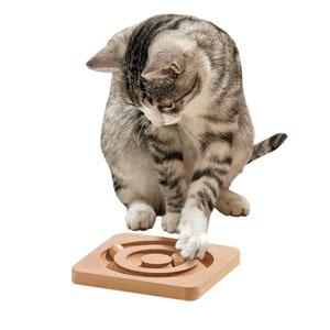Kitty Brain Train Kitty Round About