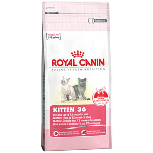 3 x Royal Canin Kitten 36 - 400g