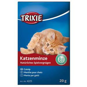Katzenminze, Catnip